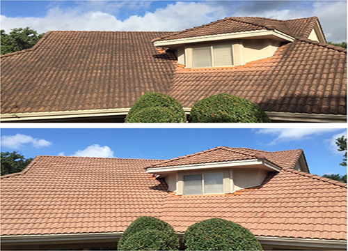 Pro Roof Cleaning Before and After
