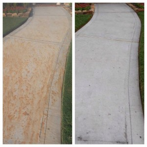 Fertilizer and Rust Stain Removal Professional