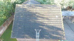 Roof Cleaning in 78201